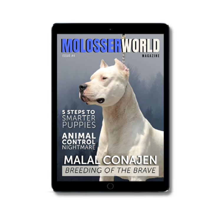 molosser_world1